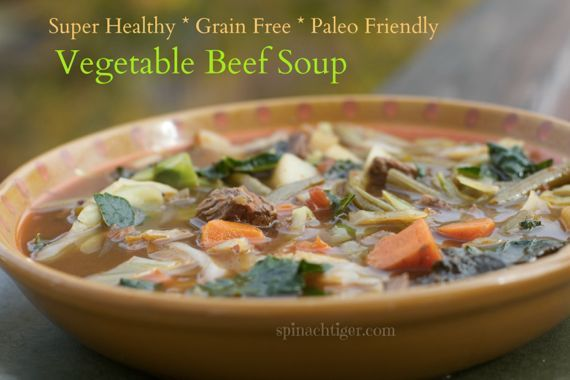 Homemade Vegetable Beef Soup, Grain free by Angela Roberts