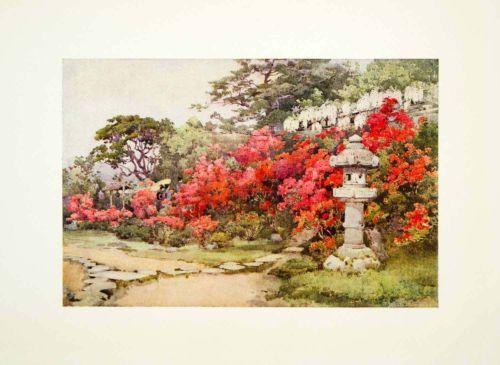 1908 Color Print Azaleas Awata Japan Ella Du Cane Botanical Flower Statue Garden