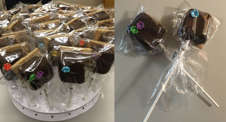 """S'mores """"Banquet"""". Marshmallows on a stick, dipped in chocolate, placed on a gram cracker with tiny candy flowers added."""