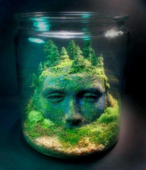 21 Terrariums (Home Decor Ideas) - moss water terrarium