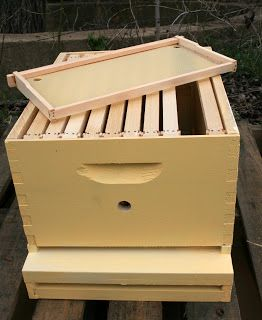 Woodworking tutorial: How to Make a Bee Box, from Squash Blossom Farm. #hive #beekeeping #honeybee
