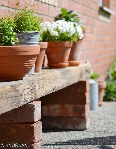 Mina vita minipenséer blommar för fullt.En rustik gammal planka.På min hemmagjorda blombänk samsas penséer, lobelia och sommardahlia.Snart blommar prästkragarna i rabatten.Jag använde mig utav 8 st tegelstenar och en grov planka när jag byggde blombänken.
