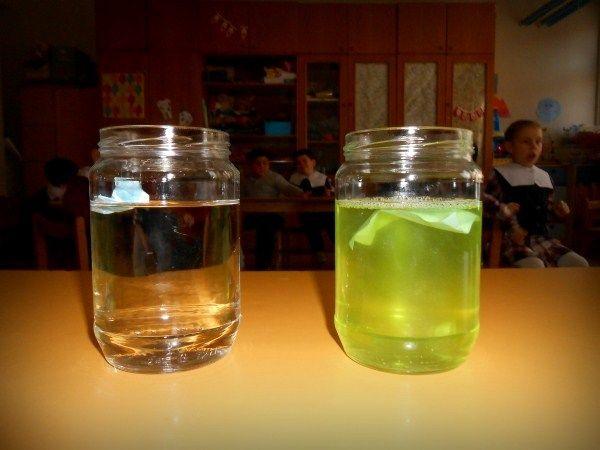 Okul öncesi eğitim : MİNİ GÜNCE: Deney: Suyun Yüzey Gerilimi
