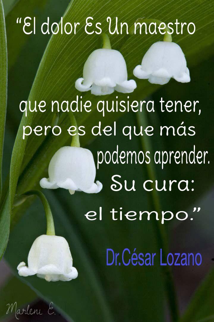 """""""El dolor es un maestro que nadie quisiera tener, pero es del que más podemos aprender. Su cura: el tiempo."""" - Dr. César Lozano"""