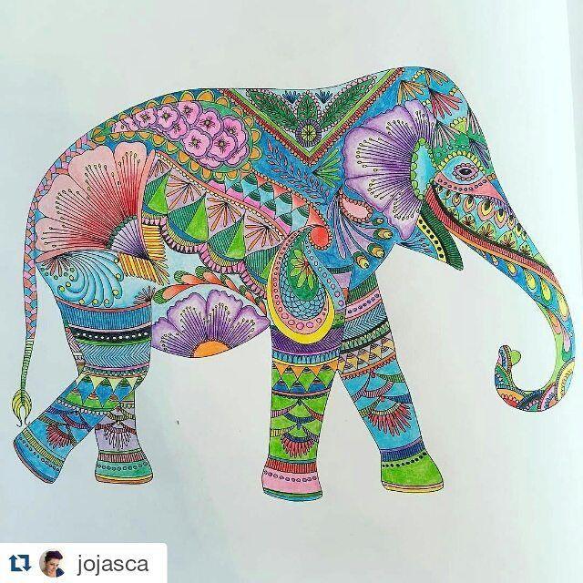 Milliemarottabooks Millie Marotta Coloridos On Instagram