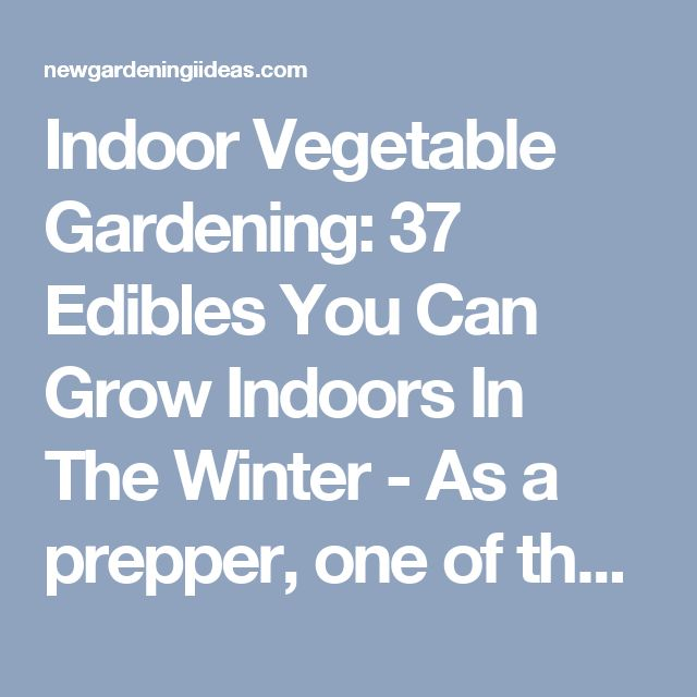 Indoor Vegetable Gardening: 37 Edibles You Can Grow Indoors In The Winter - As a prepper, one of the essential skills is for you to be able to sustain yourself and have food available to you the whole year, if and when you need it. One way of achieving this, is through an indoor vegetable garden. It doesn't take up a lot of space and, more importantly, is able to function entirely inside. - New Gardening Ideas