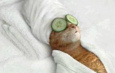 relaxed (relajado)