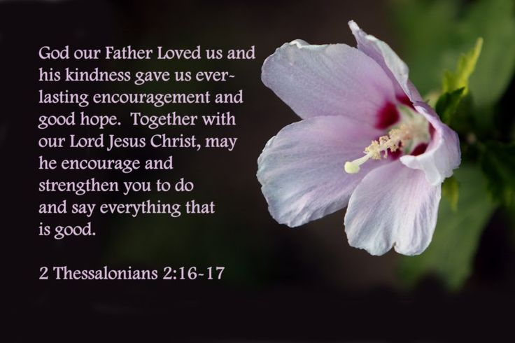 2 Thessalonians 2:16-17Grace, Thessalonians 2 16 17, God Words, Quotes, Jesus Christ, Lord Jesus, Bible Verses, Fathers, Thessalonians 21617