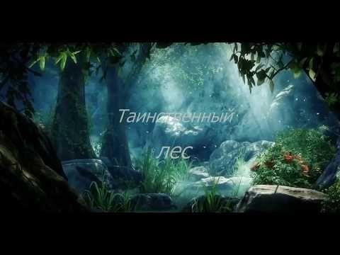 """Мой сказочный мир: Альбом """"Таинственный лес"""""""