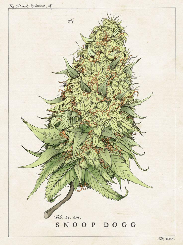 Snoop Dog gig poster #marijuana
