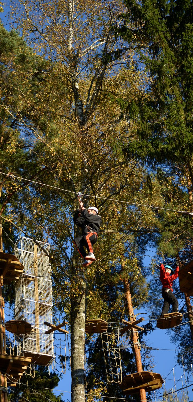 Vauhdin takasivat jopa satametriset pitkät liu'ut. Sinisen radan liu'ussa. The longest ziplines Treetop Adventure Huippu are more than 100 metres long. #seikkailupuisto #treetopadventure #finland #espoo
