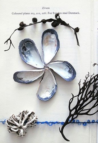 "something to make with ""gifts"" from the sea, maybe?  or a collage with the shells into flower shapes."