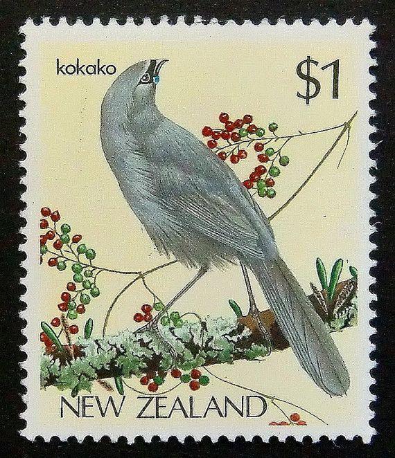 Kokako Bird New Zealand Handmade Framed by PassionGiftStampArt