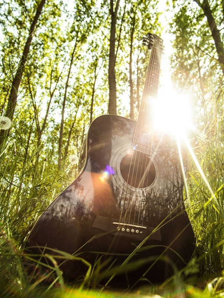 New Acoustic Guitar In The Forest Mobile Wallpaper Natural Free Mobile Wallpaper Acoustic Download Free M Easy Guitar Guitar Tips Beautiful Travel Destinations