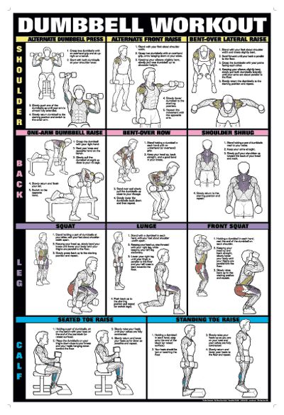 Dumbell Workout!