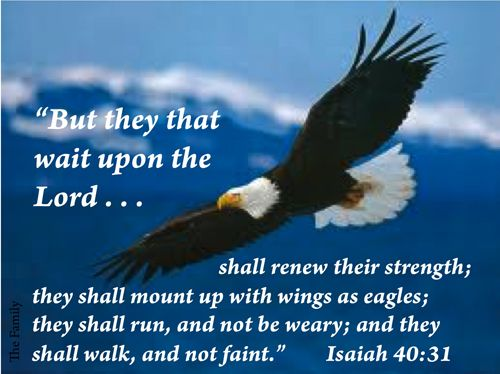 """""""But they that await upon the Lord shall renew their strength; they shall mount up with wings as eagles; they shall run, and not be weary; and they shall walk, and not faint."""" Isa. 40: 31"""