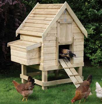 Dog house size chicken coop chickens pinterest for Chicken coop dimensions
