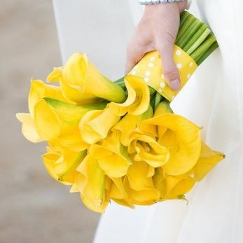 Google Image Result for http://www.bunchesdirect.com/components/com_virtuemart/shop_image/product/Classic-Yellow-Mini-Calla-Lily-Wedding-Bouquet.jpg