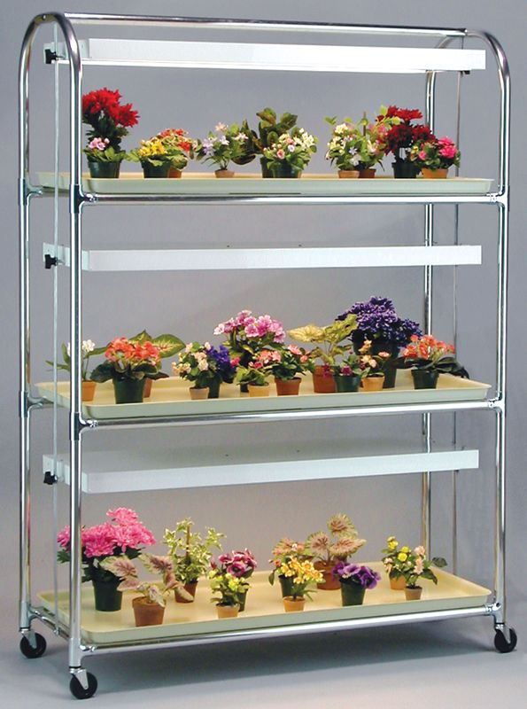 "This type of light stand is perfect for growing African Violets and any of their plant ""cousins"""