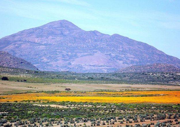 Die Noord-Kaapse landskap in Kamieskroon.