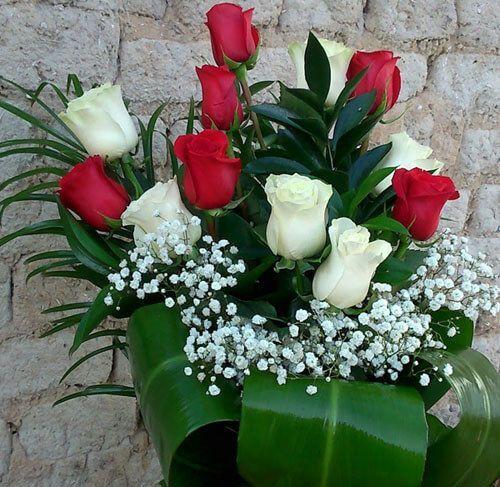 Docena De Rosas Rojas Y Blancas Rosas Son Amores Pinterest