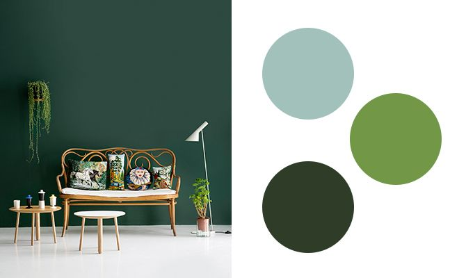 A wall in a dark green color that combined with light wood and plants, photo: Kristiina Kurronen. On the right, some of Alcros all the exciting green colors: Popsicles, Green and pine needles.