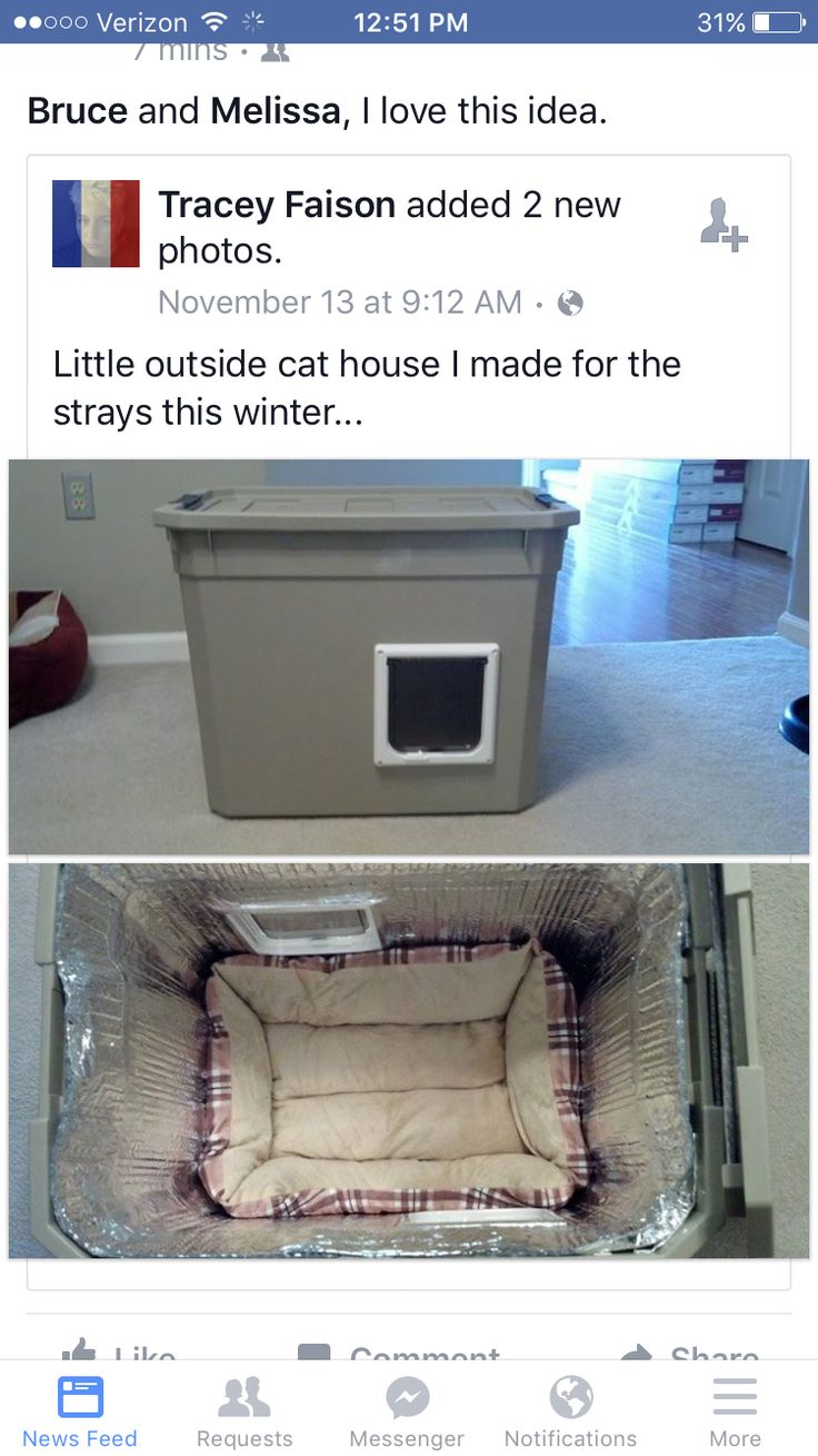 Diy Safe House For Stray Cats In Winter Outside Projects
