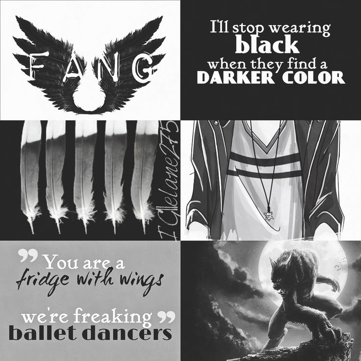 Fang || Maximum Ride                                                                                                                                                                                 More