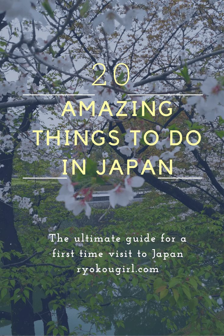 Best Visit Japan Ideas On Pinterest Holidays In Japan - 12 things to see and do in tokyo
