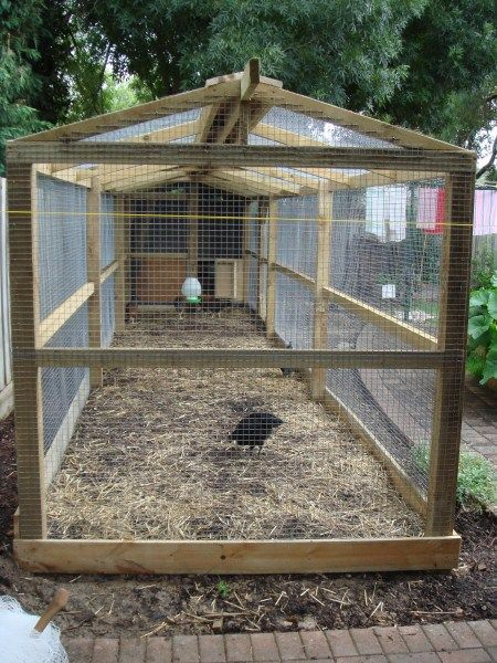 Image result for making a chicken run wood & mesh