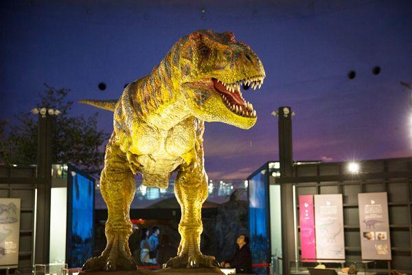 見て、触れて、発掘できる!それが福井「恐竜博物館」