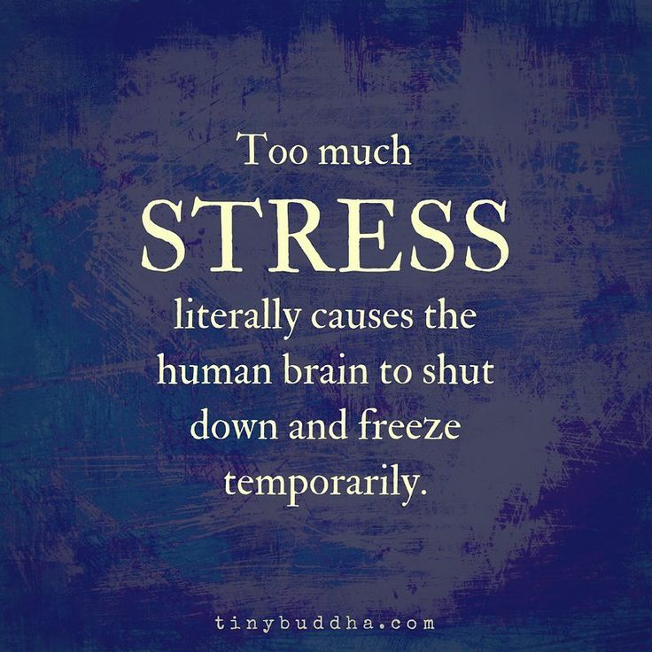 Too much stress literally causes the human brain to freeze and shut down temporarily.⠀  ⠀  #tinybuddha #quote #wisdom #wordsofwisdom #dailyquotes #quoteoftheday #dontstress #deepbreaths #staycalm