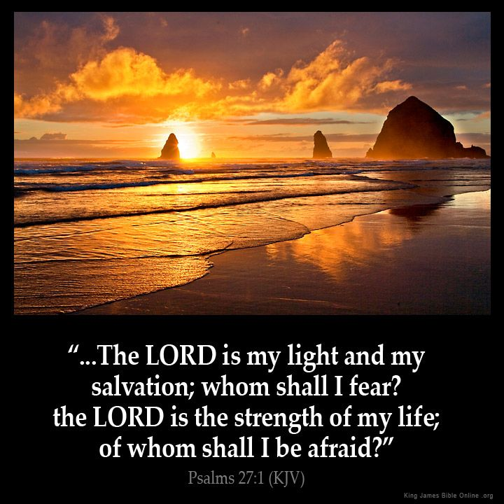 Psalms 27:1  The LORD is my light and my salvation; whom shall I fear? the LORD is the strength of my life; of whom shall I be afraid?
