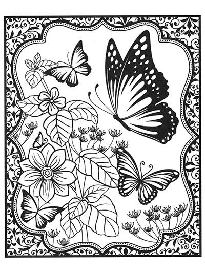 butterflies for colorists