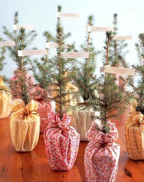 I love this idea. potted herbs as take home gifts could work as centerpieces if lavender, mint, thyme, and bay are in bloom. donating any remaining flowers to local hospitals and nursing homes is also quite lovely. recycling is a must, and any left over food could be donated to a shelter.