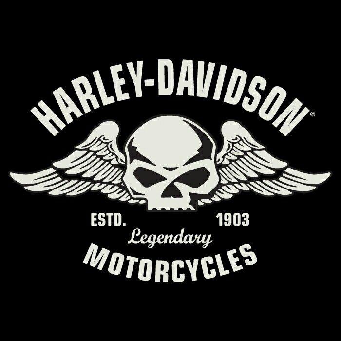 Best Harley Davidson Stuff Images On Pinterest Harley - Stickers for motorcycles harley davidsonsharley davidson tank decals stickers graphics johannesburg