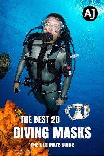 Best Scuba Diving Images On Pinterest Marine Biology Nature - 10 best places to learn to dive the padi way