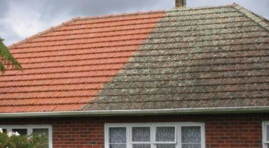 One side of the roof treated for moss and mold by Wash Rite New Zealand other side not treated.
