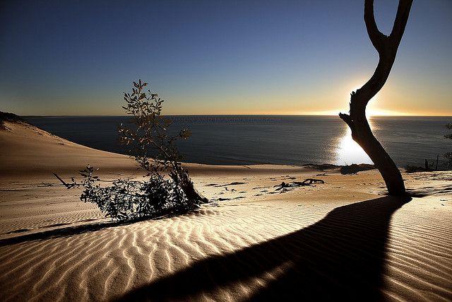 海外旅行世界遺産 砂浜 フレーザー島の絶景写真画像ランキング オーストラリア