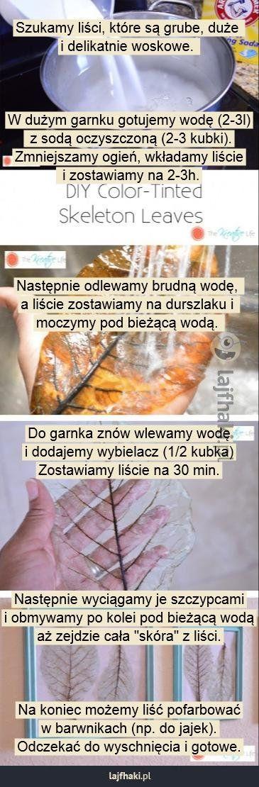 Jak wybielić liście? - Szukamy liści, które są grube, duże i delikatnie woskowe. W dużym garnku gotujemy wodę (2-3l) z sodą oczyszczoną (2-3 kubki). Zmniejszamy ogień, wkładamy liście i zostawiamy na 2-3h. Następnie odlewamy brudną wodę, a liście zostawiamy na durszlaku i moczymy pod bieżącą wodą. Do garnka znów wlewamy wodę i dodajemy wybielacz (1/2 kubka) Zostawiamy liście na 30 min. Następnie wyciągamy je szczypcami i obmywamy po kolei pod bieżącą wodą aż zejdzie ...
