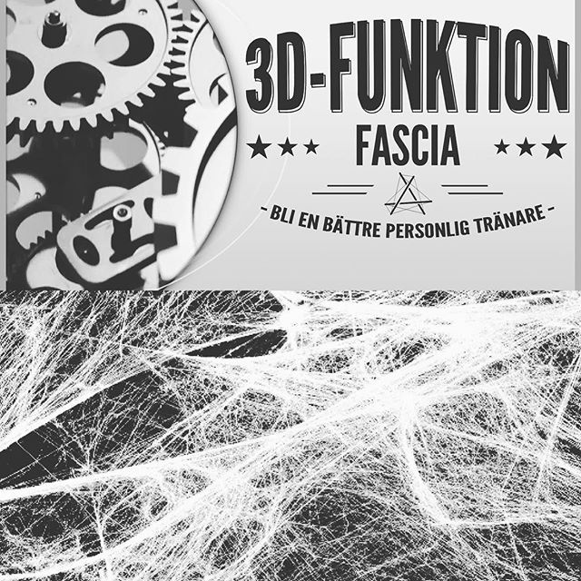 Personal development in depth... Yet another great two days with highly motivated and skilled colleagues at 3D Funktion in Stockholm. Special thanks to #andreasöhgren #sethronland #louisedahl #isabellafransén #pt #leonardosnelleman #moveqacademyeurope #sportperformancecentrerijnmond #rotterdam