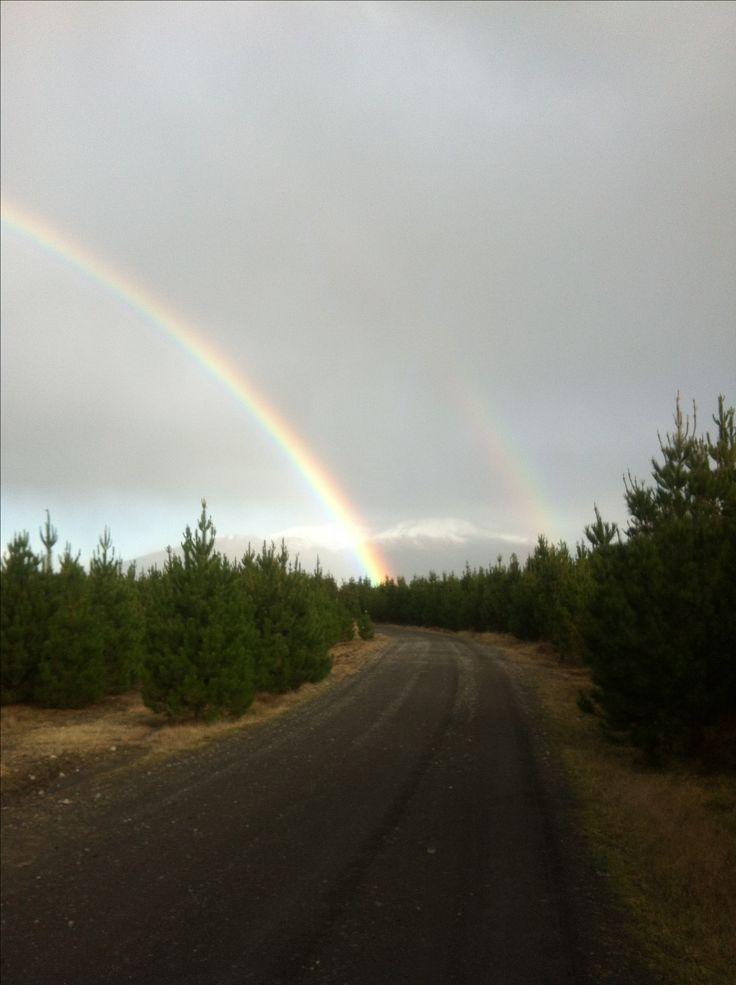 Caught a rainbow :)