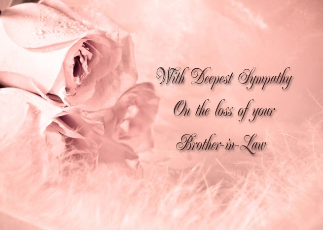 Sympathy On Loss Of Brother In Law With Roses And Feathers Card