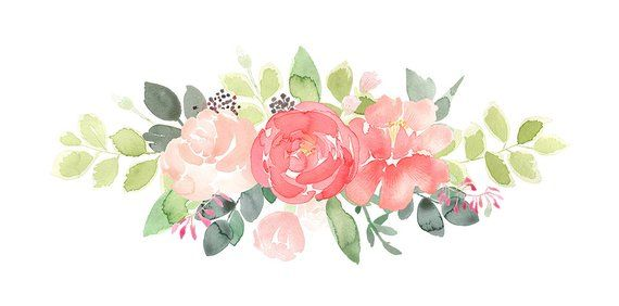 Peonies Clipart Peony Flower Drop Floral Frame Peony Clip Etsy Flower Art Flower Painting Watercolor Flowers