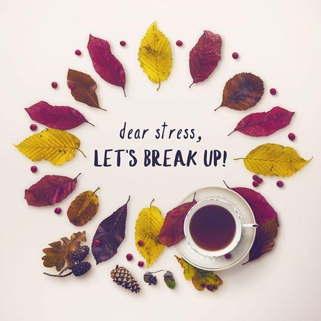 dear stress, let's break up!  Всегда ожидайте лучшего!  quotes, цитаты, love and life, motivational, цитаты об отношениях, любви и жизни, фразы и мысли, мотивация, осень