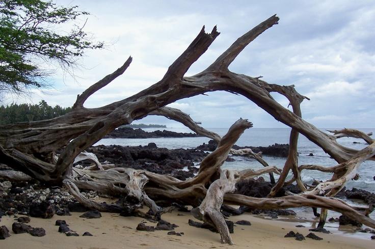 Missing My Hawai'i...