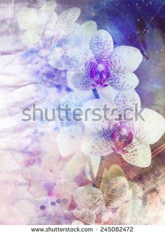 Abstract floral background with orchid- watercolor grunge texture