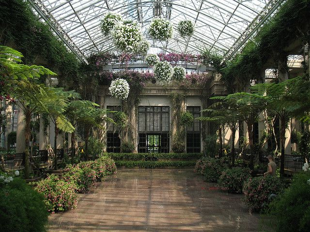 Indoor solarium love the hanging flower globes for Indoor botanical gardens
