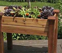 best 25 container vegetable gardening ideas on pinterest container vegetables growing veggies and growing vegetables indoors - Container Garden Ideas Vegetables