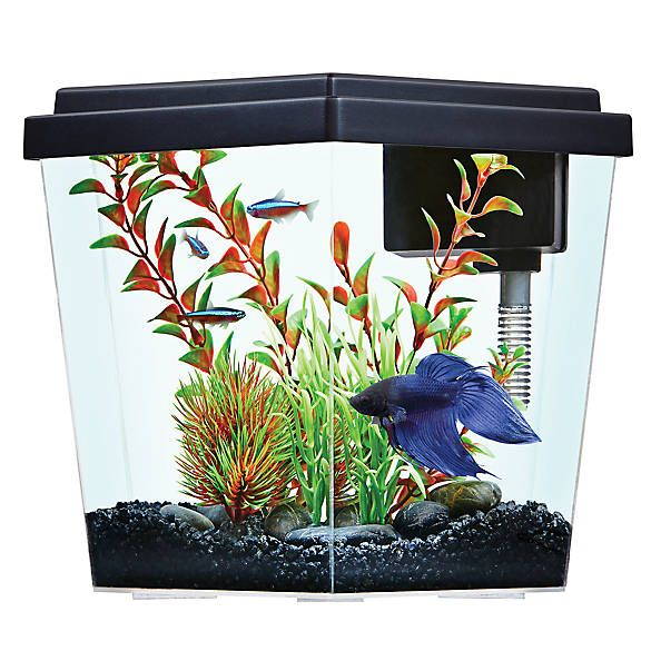Top Fin Excite Aquarium 1 Gallon Fish Starter Kits Petsmart Pet Spray Fish Tank Supplies Goldfish Tank